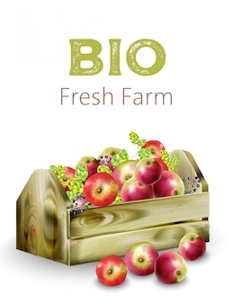 Bio frische bauernhof holzkiste voller äpfel, artischocken und beeren