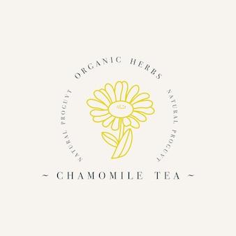 Bio-kräuter-kamillentee. logo-vorlage im trendigen linearen stil isoliert