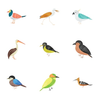 Birds creature flat icons pack