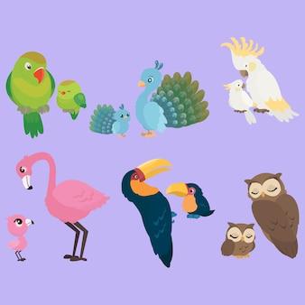 Birds mutterschaft sammlung