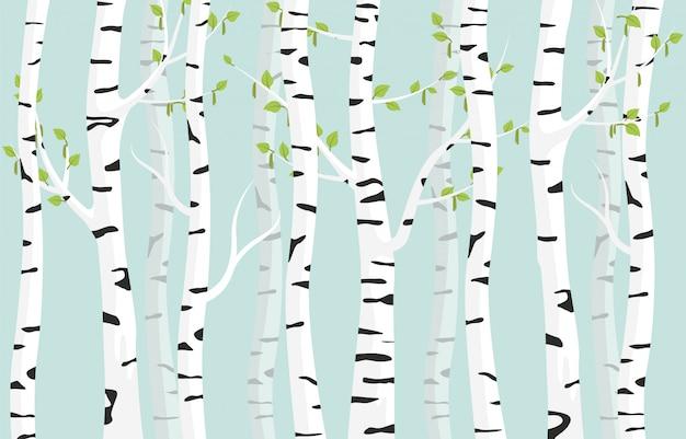Birkenwald hintergrund. frühlingsbirkengrün junge blätter fleckige rinde auf baum.
