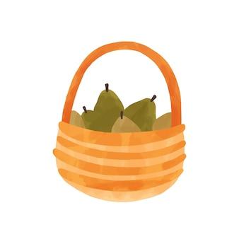 Birnen in der gezeichneten illustration der korbhand. holztopf mit köstlichen reifen früchten isoliert