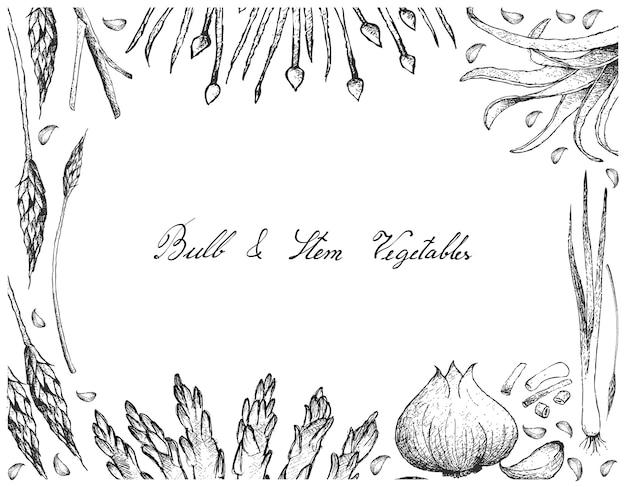 Birnen-und stamm-gemüse-rahmen auf weißem hintergrund