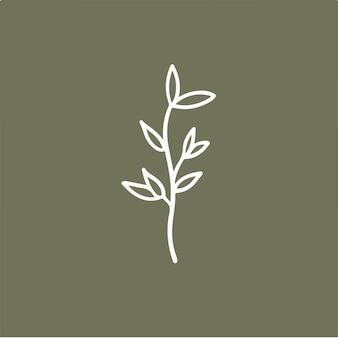 Blätter blumensymbol social media post botanische vektor-illustration
