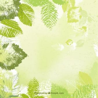 Blätter hintergrund in gestanzten stil