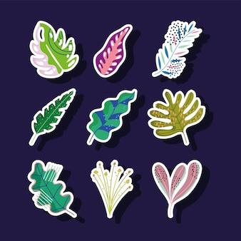 Blätter laub natur abstrakte dekoration aufkleber ikonen set illustration