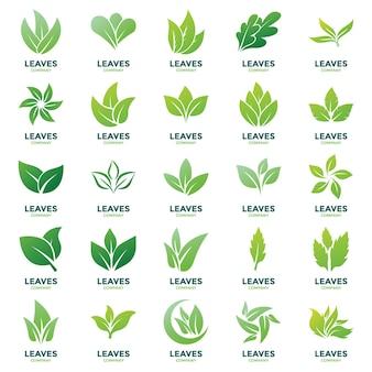 Blätter logo vektoren pack