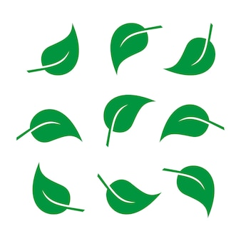 Blätter symbol vektor-set isoliert auf weißem hintergrund. blatt-logo-design-element