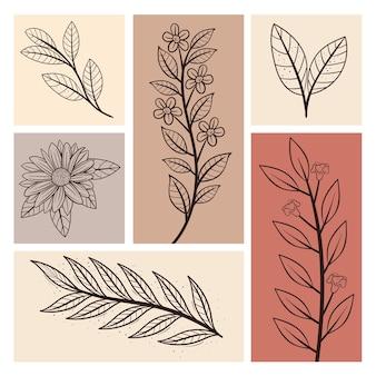 Blätter- und blütengruppe