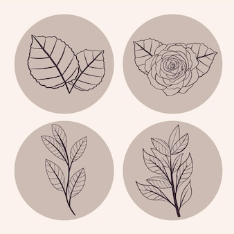 Blätter- und blumensymbolsammlung symbol