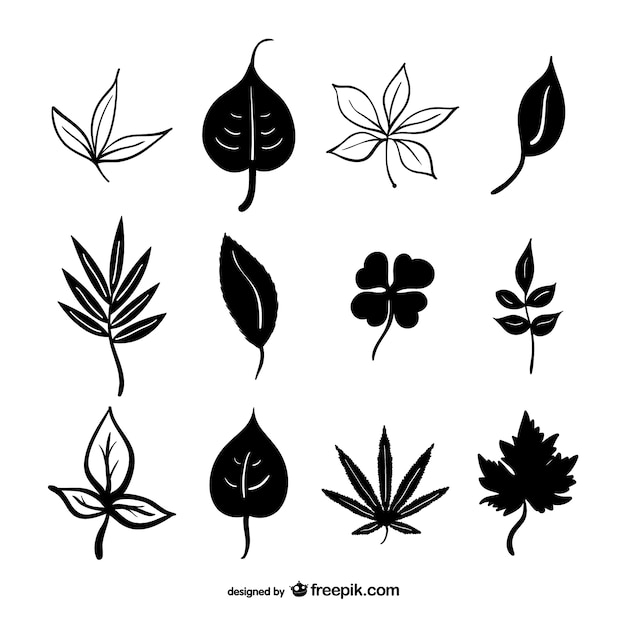 Blätter vektor-silhouetten kostenlosen download