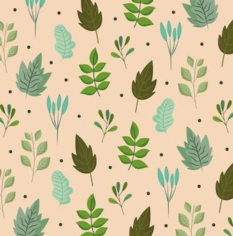 Blätter zweig naure botanische ökologie laub natur hintergrund illustration