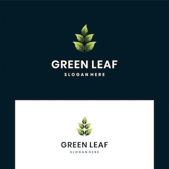 Blatt design logo vorlage. grünes blatt-vektor-design