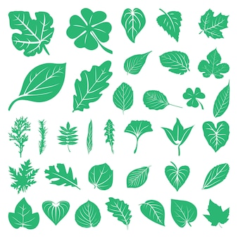 Blatt-laub-grün-ökologie-natur-satz