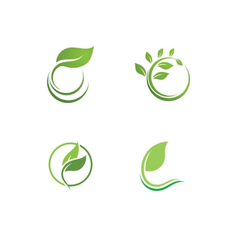 Blattgrüne pflanze logo frische vektorvorlage
