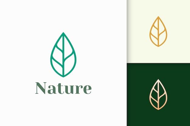 Blattlogo in einfacher linienform für schönheits- und gesundheitsmarke