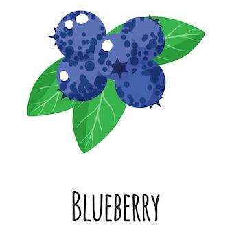 Blaubeer-superfood-frucht für vorlagenbauernmarktdesign, -etikett und -verpackung. bio-lebensmittel mit natürlichem energieprotein. isolierte illustration der vektorkarikatur.