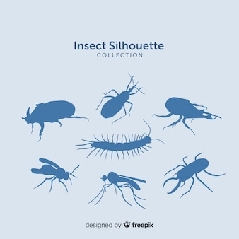 Blaue insektenschattenbildsammlung