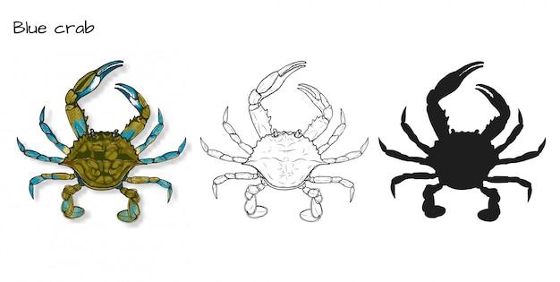 Blaue krabben