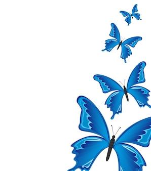 Blaue schmetterlinge über weißer hintergrundvektorillustration