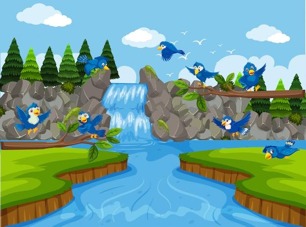 Blaue vögel in der wasserfall szene