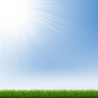 Blauer himmel und grüne grasgrenze