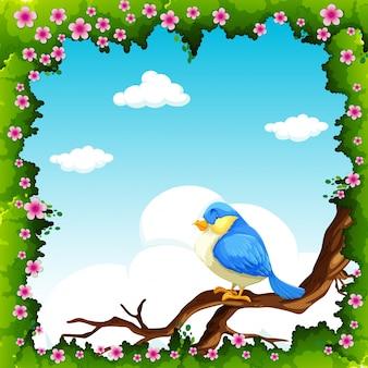 Blauer vogel auf der niederlassung