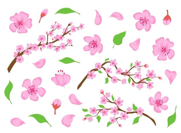 Blühen sie sakura rosa blüten, knospen, blätter und äste. frühlingsblumenelemente der japanischen kirsche. apfel- oder pfirsichblüten-blumenvektorsatz. natürliches asiatisches traditionelles blühen und laub