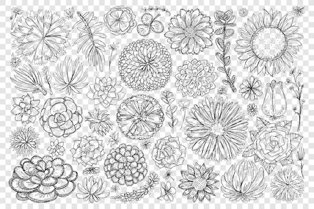 Blühende blumen und pflanzen kritzeln setillustration