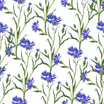 Blühende kornblumen mit blättern und stängeln vektor