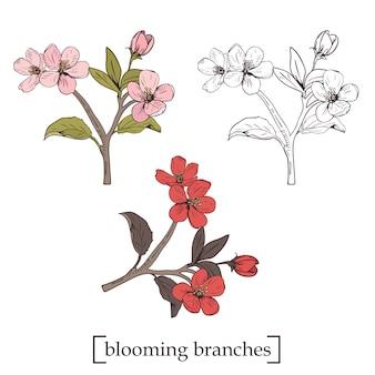 Blühender baum. set sammlung. hand gezeichnete botanische blütenzweige