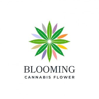 Blühender hanf
