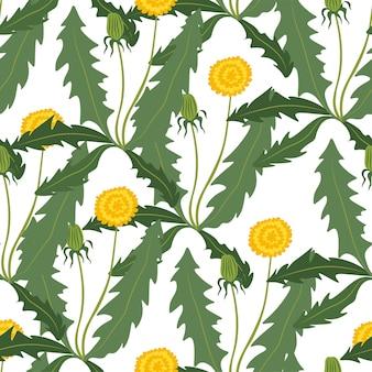 Blühender löwenzahn in sommerflora und botanik