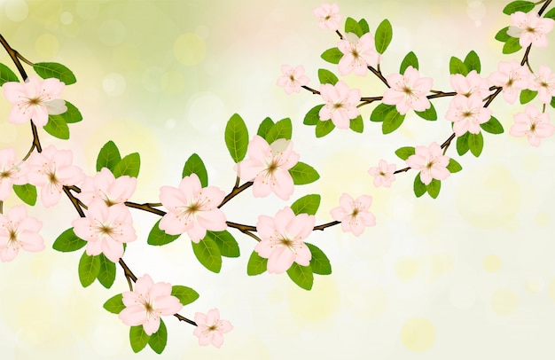Blühender niederlassungsvektor mit rosa frühlingsblüte.