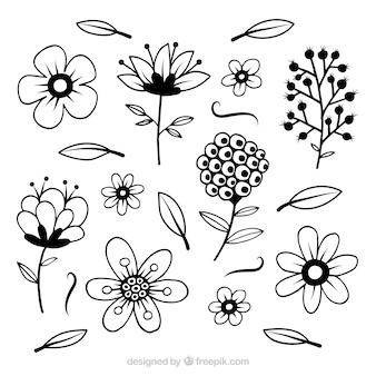 Blüht sammlung mit gezeichnetem stil des stammes in der hand