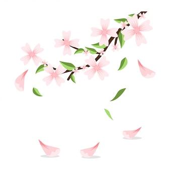 Blütenzweig von kirschblüte mit den fallenden blumenblättern und den blättern. vektor-cartoon-illustration isoliert.