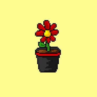 Blume im topf mit pixel art style
