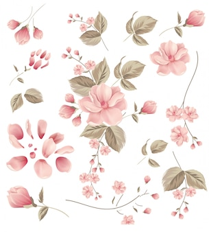 Blume, rahmen
