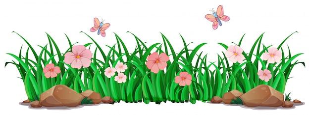 Blume und gras für dekor