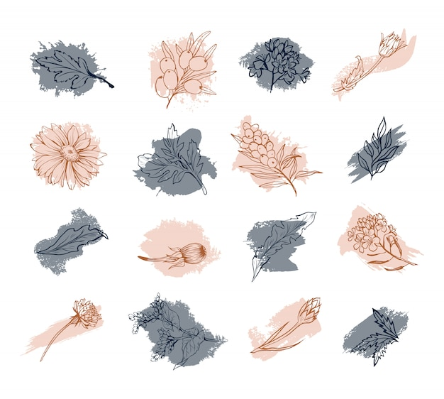 Blumen, blüten, blumenkompositionsskizzenkunst
