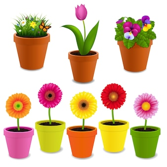 Blumen in der topf-sammlung