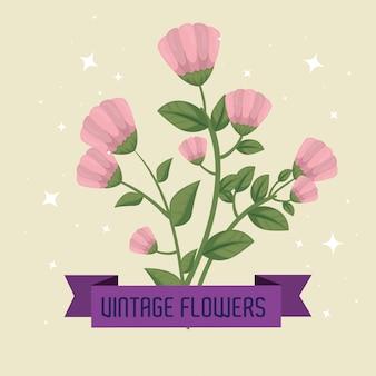 Blumen mit band und sternen