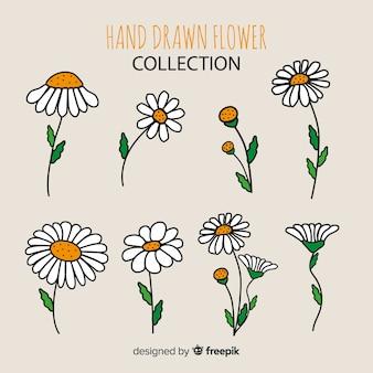 Blumen-sammlung