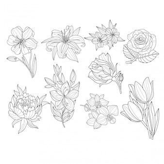 Blumen set. hand gezeichnete illustration