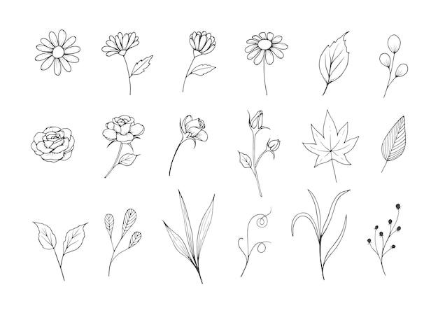 Blumen-skizzen-sammlung mit strichgrafik-stil