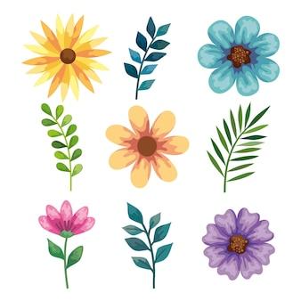 Blumen und blätter