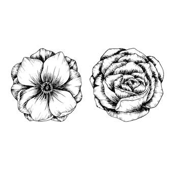 Blumen-und blatt-skizze-kunstsammlung