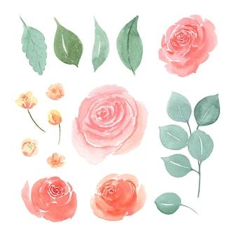 Blumen- und blattaquarell-elementsatz