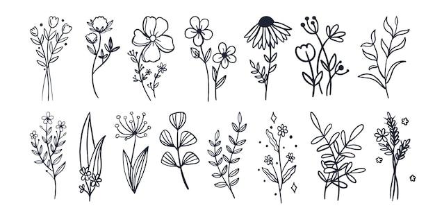 Blumen- und blatthandskizze schwarz mit strichzeichnungen einfache blumen