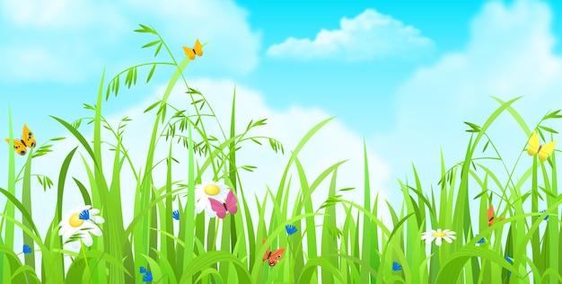 Blumen und gras im feld himmel mit wolken